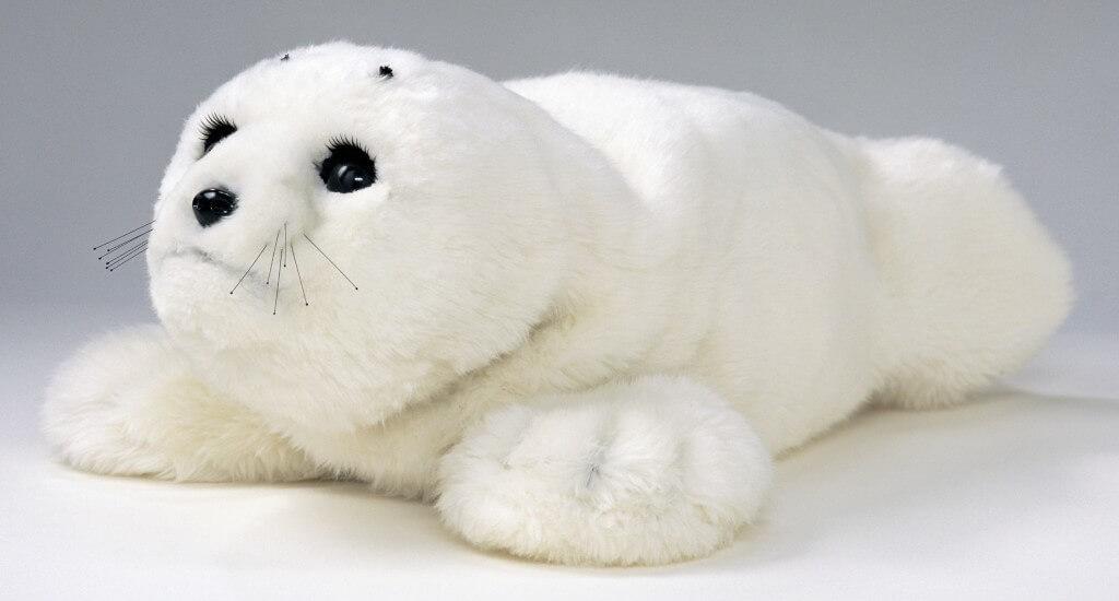paro-foca