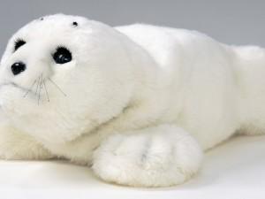 Robòtica y demència: Paro, el bebé foca